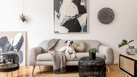 Stue med fin hund i sofaen.
